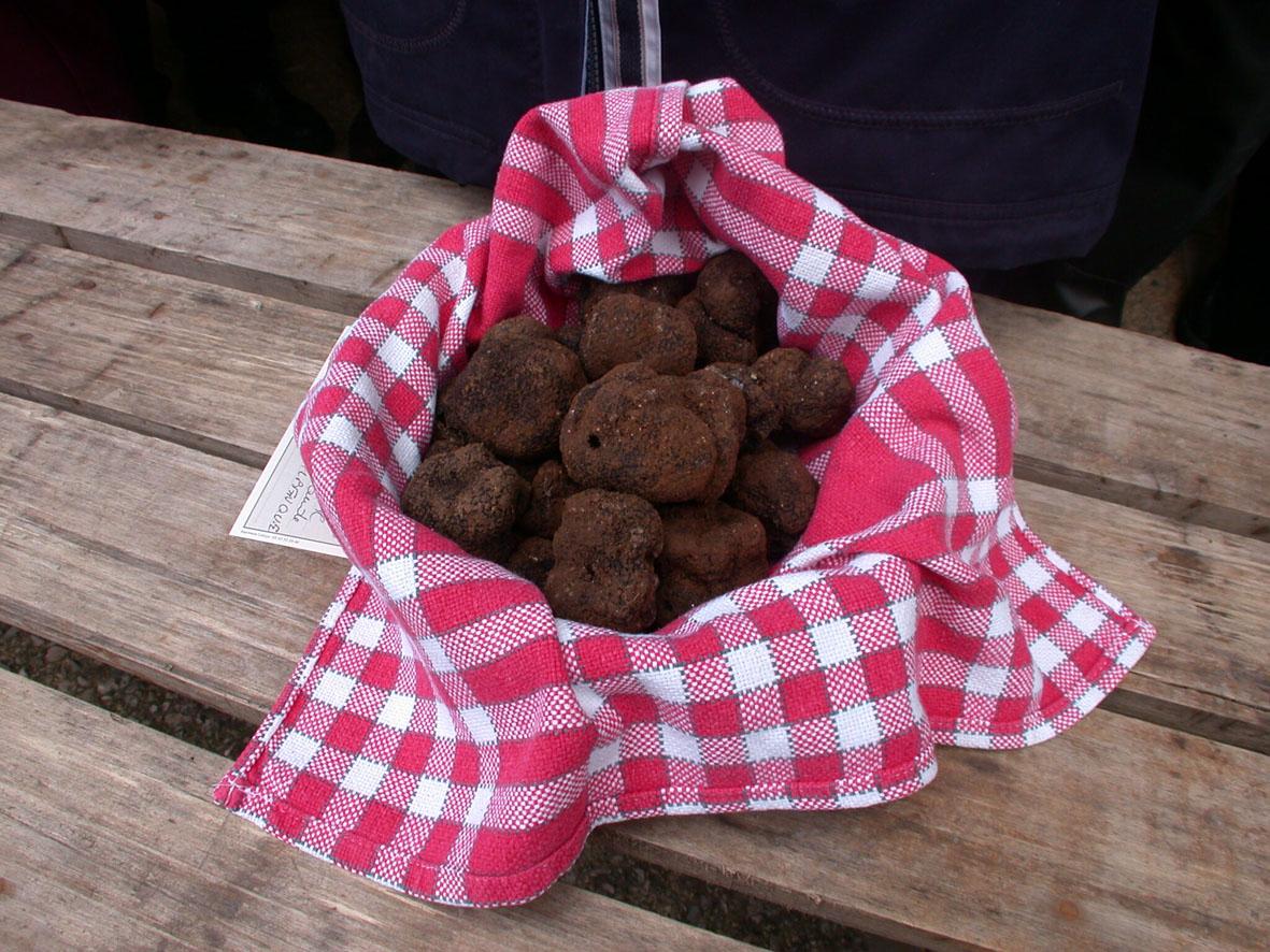 truffes-®-Lot-Tourisme-J.-Maureille